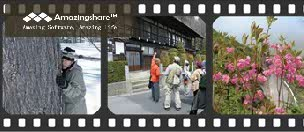 topmovie20110502
